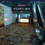 シンガポールのチャンギ国際空港のプライオリティパスで使える入国直後に行けるラウンジ。AIRPORT WELLNESS OASIS